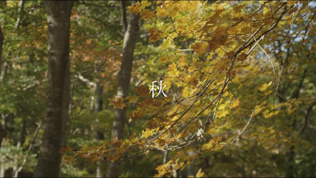 ff-aki-2